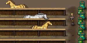 Hra - Nakŕm koníčky