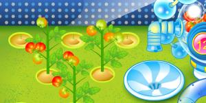 Hra - Sue Flower Garden
