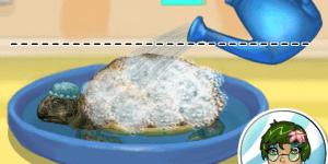 Hra - Turtle Care