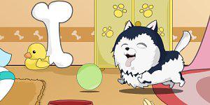 Hra - Cute Dog Contest