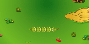Hra - Fruit Snake