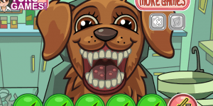 Hra - Pet Crazy Dentist