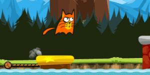 Hra - Crazy Cat