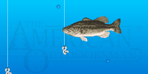 Hra - Crappie Fishing