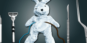 Hra - Cure The Bunny