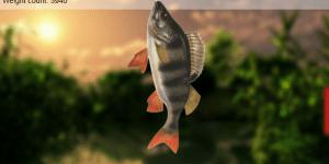 Hra - Lake Fishing