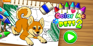 Hra - Color Me Pets 2