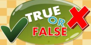 Hra - Eg True False